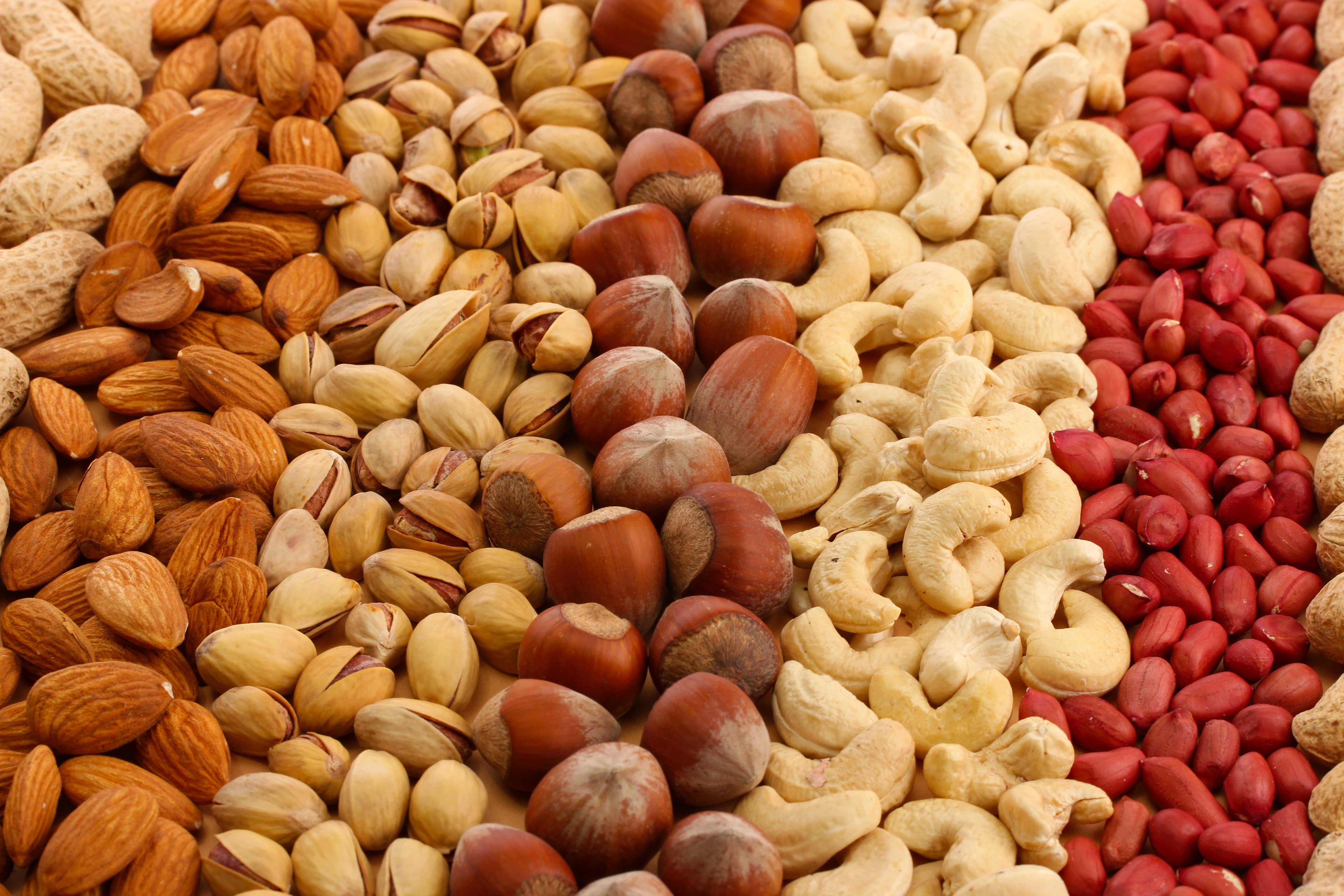A Variety of Delicious Nuts