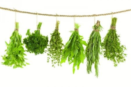 11 Incredibly Powerful Herbs