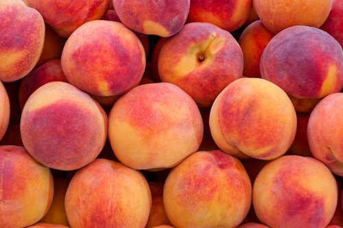 Peaches Nude Photos 93