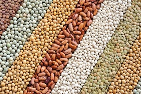 8 Beans from the Mediterranean Diet