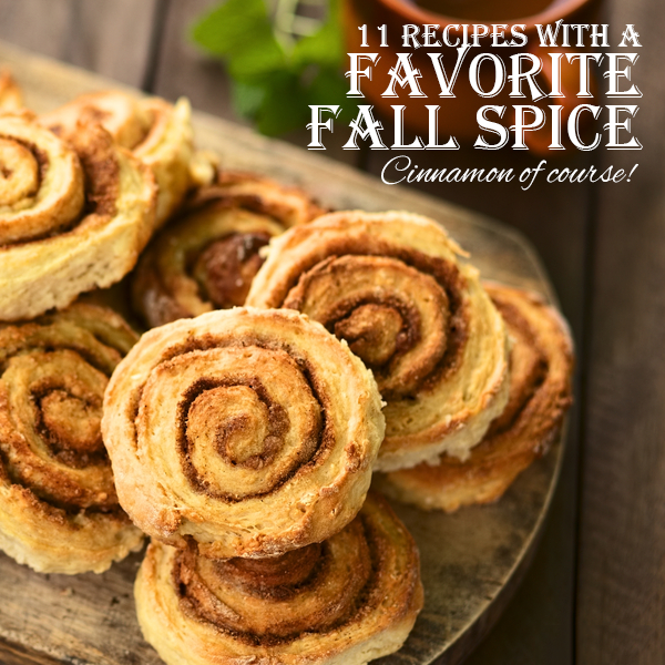 11 Recipes with a Favorite Fall Spice - Cinnamon!