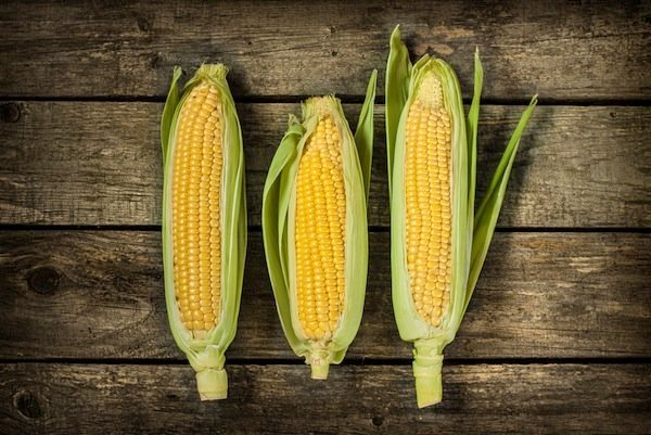 Hold onto Sweet Summer Corn All Year Long