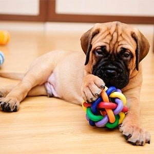 5 DIY Dog Puzzle Games