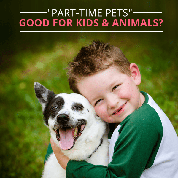 Part-time-Pets-Good-for-Kids-&-Animals