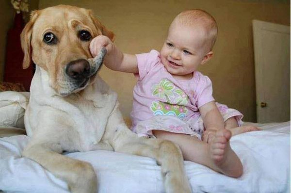 10 Pets and Their Adorable Human Siblings 001
