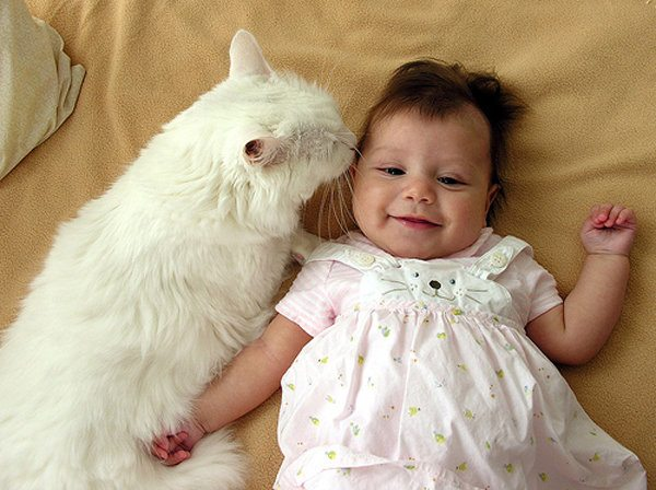 10 Pets and Their Adorable Human Siblings 003