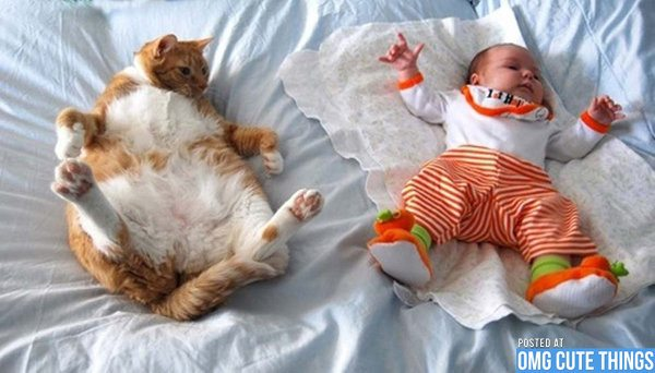 10 Pets and Their Adorable Human Siblings 006