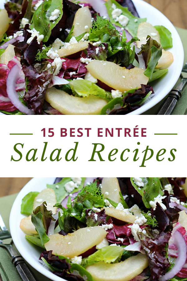 15 Best Entree Salad Recipes