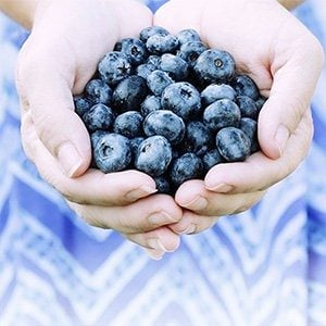 17 Best Superfoods for Weight Loss