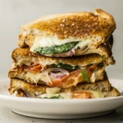 tomato mozzarella and basil panini