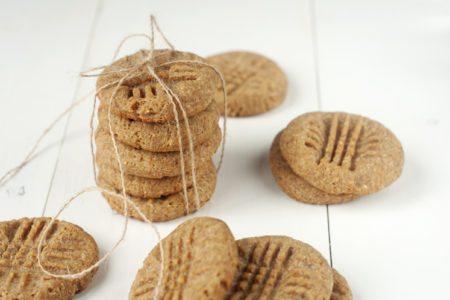 Peanut Butter Doggie Cookies