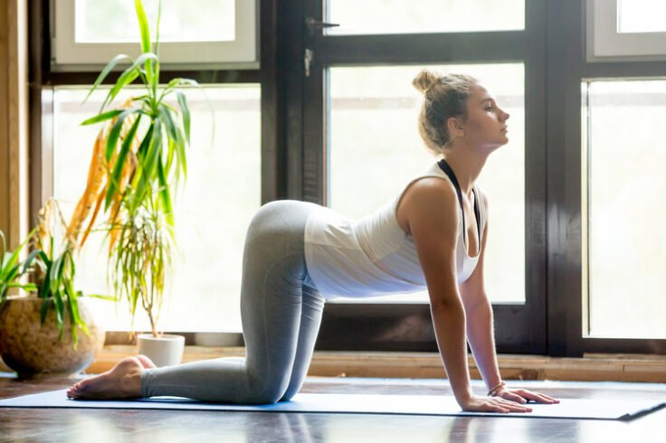 Yoga Poses to Zen Out Your Body