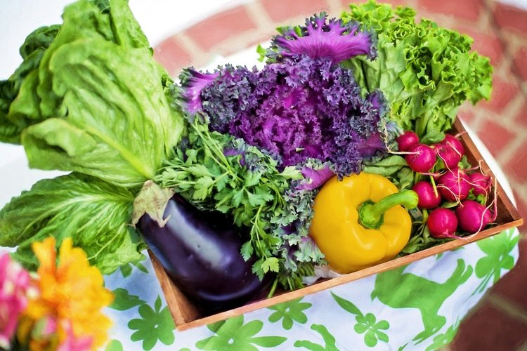 improve your diet for a healthier lifestyle