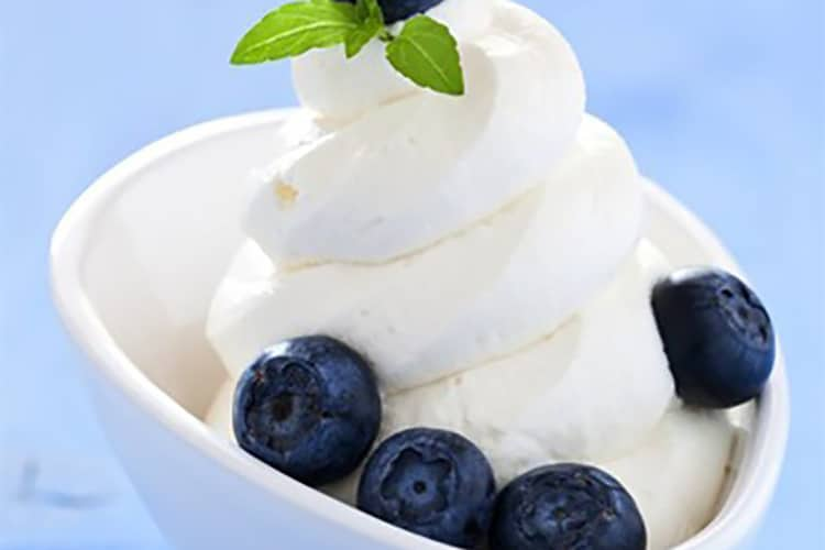 Creamy Vanilla Frozen Yogurt