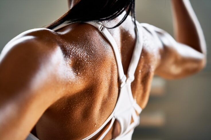 Back to the Basics: The Greatest Exercises for a Stunning Back